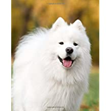 Samoyed: Artified Pets Journal/Notebook/Diary, 8 by 10 and 160 Pages