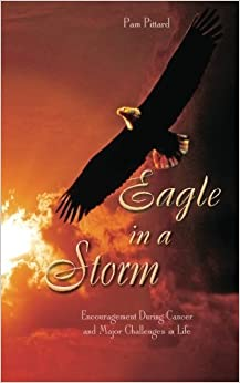 Eagle in a Storm: Encouragement During Cancer and Major Challenges in Life by Pam Pittard (2013-03-11)