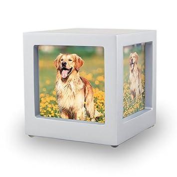 Amazoncom Oneworld Memorials Photo Frame Wood Pet Cremation Urn