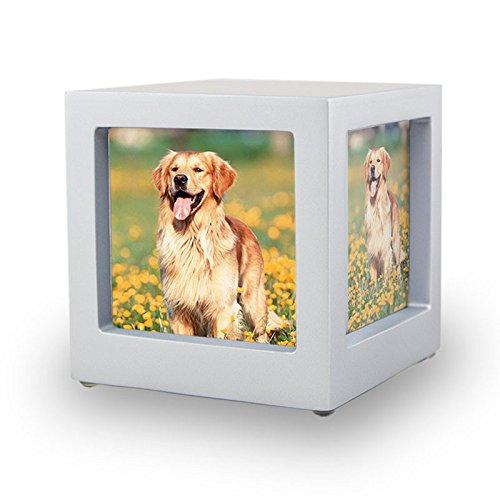 OneWorld Memorials Photo Frame Wood Pet Cremation Urn - Small - Holds Up To 45 Cubic Inches of Ashes - Silver Pet Cremation Urn for Ashes - Engraving Sold Separately by OneWorld Memorials