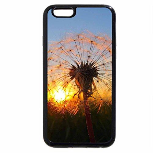 iPhone 6S / iPhone 6 Case (Black) Even Nature Likes a Sunset View