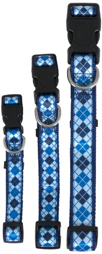 Aspen Pet 11460 Collar for Pets, 3/4 by 14 to 20-Inch, Harlequin Blue