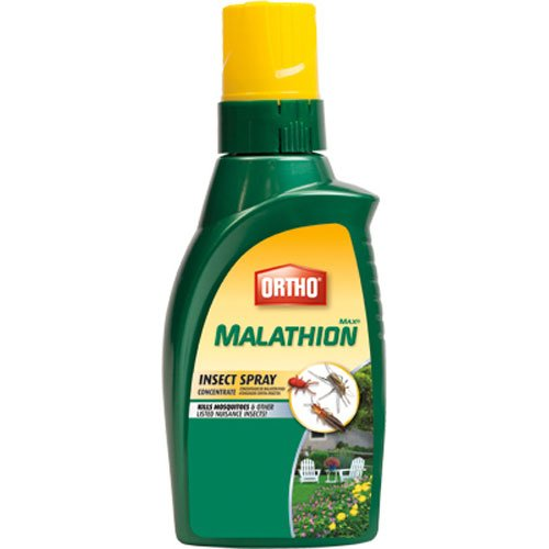 ortho-max-malathion-concentrate-insect-spray-16-ounce