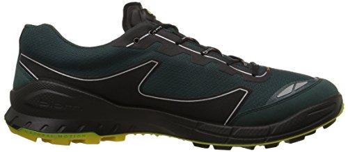 f0af4f56b49d9 ECCO Men's Biom FL Gore-Tex-M Trail Running Shoe - Import It All
