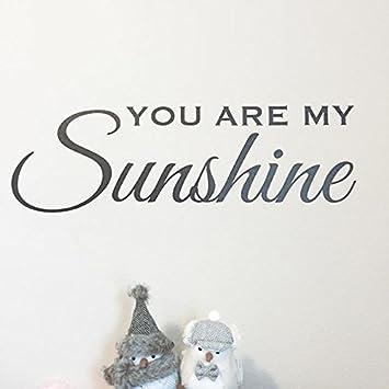 Amazoncom  You Are My Sunshine Wall Decal Kids Rooms Nursery - Wall decals you are my sunshine