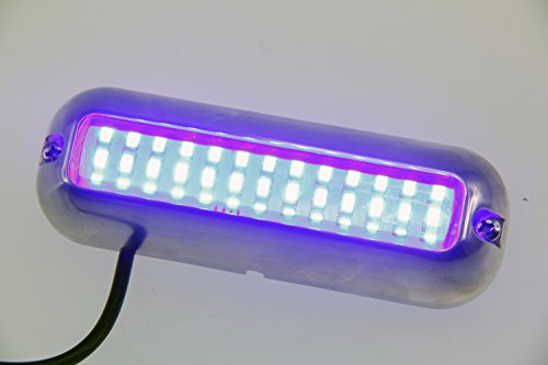 Pactrade Marine Pontoon Boat LED Underwater Light S.S 316 Housing 416 lm, Blue by Pactrade Marine (Image #4)