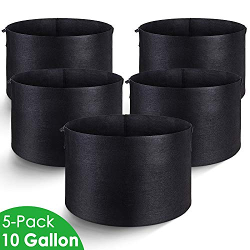 10 gallon plant pot - 4