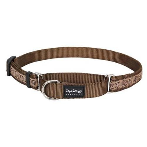 Red Dingo Hypno Brown Medium Martingale Collar