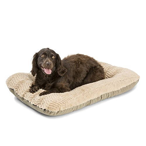 West Paw Design Heyday Dog Bed with Microsuede, Super Durable and Easy to Clean Pet Bed, Plush Oatmeal, Medium