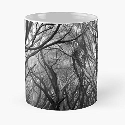 Trees Snow Gums Australia Enchanted -funny Gifts For Men And Women Gift Coffee Mug Tea Cup White-11 Oz.