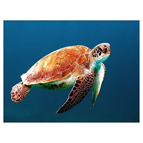 LIPHISFUN DIY 5D Diamond Painting by Number Kit for Adult, Full Round Resin Beads Drill Diamond Embroidery Dotz Kit Home Wall Decor,30x40cm,Sea Turtle