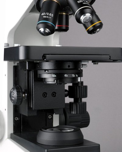 AmScope T580B Professional Compound Trinocular Microscope, WF10x and WF20x  High-Point Plan Eyepieces, 40X-2000X Magnification, Brightfield, Halogen