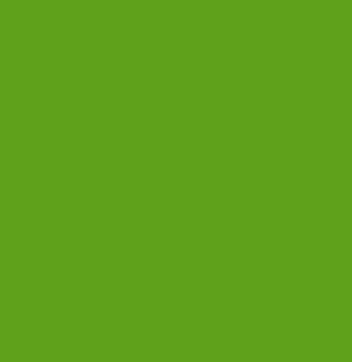 APPLE GREEN 100 SHEET PACK A4 DALTON MANOR 80gm PAPER