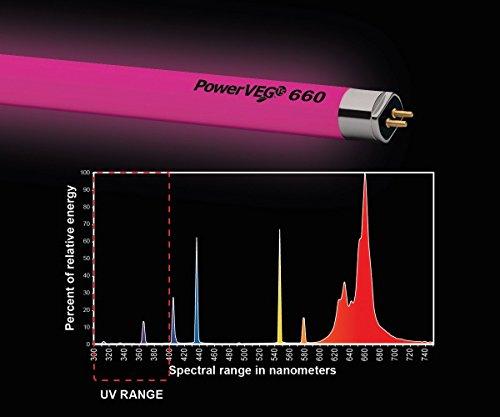 Eye PowerVEG 660 4 ft 54 watt HO T5 (24/Cs)