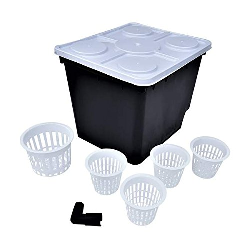 Dutch Bucket Set, 10 pack, Bato Buckets by Bootstrap Farmer - Includes 50 Net Pots for Hydroponics Aquaponics by Bootstrap Farmer