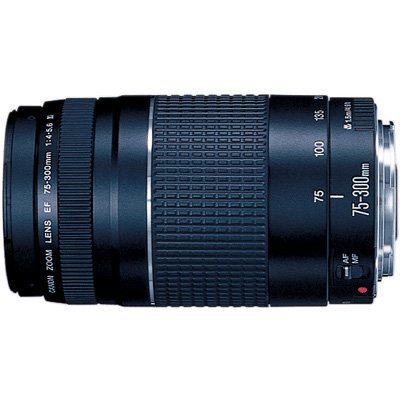 Canon EF 75-300mm f/4-5.6 III Telephoto Zoom Lens for Canon SLR Cameras (Cameras Telephoto Canon)