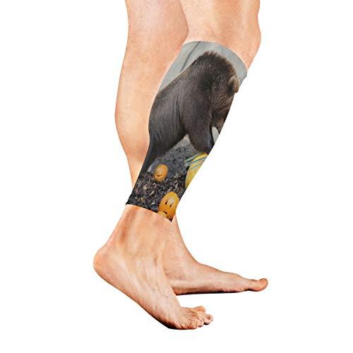 Leg Sleeve Halloween Dog Bear Pumpkin Calf Sleeves 1 Pair for Men/Women Running/Cycling/Maternity/Travel/Ourdoor Activities]()