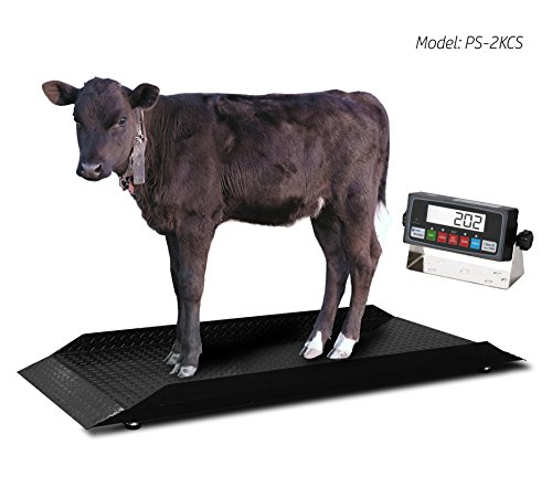 livestock scales for sale only 4 left at 65. Black Bedroom Furniture Sets. Home Design Ideas