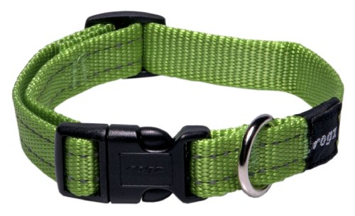 ROGZ Reflective Dog Collar for Medium Dogs, Adjustable from 12-17 inches, Green