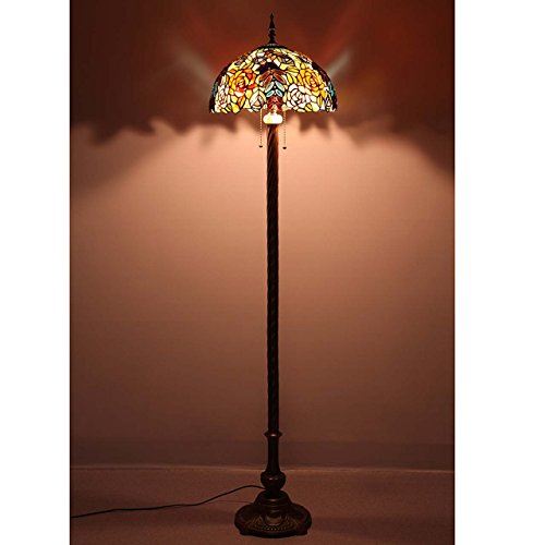 Bieye L10575 16-inches Rose Grapes Tiffany Style Stained Glass Floor Lamp
