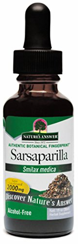 Nature's Answer Alcohol-Free Sarsaparilla Root, 1-Fluid Ounce