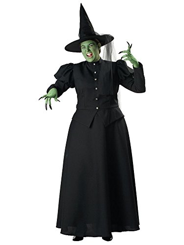 In Character Costumes 139928 Wicked Witch Elite Collection Adult Plus Costume - (Xxx Large Costume)