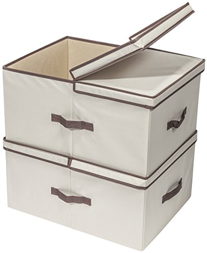 Storage Bin with Lid & Divider
