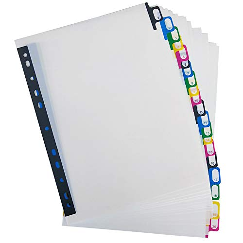 Olpchee PP A4 11 Hole Binder Index Tabs Dividers Customizable Table of Contents Divider for Office School (20-Tabs) ()