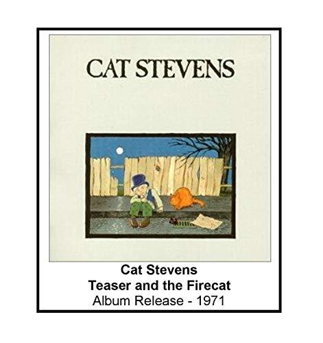Cat Stevens 1971 Teaser and The Firecat Album Cover 3