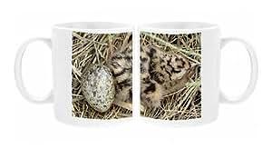 Photo Mug of Black-headed Gull - chick and egg by Prints Prints Prints