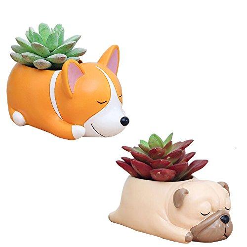 2 PCS Set Cute Cartoon Animal Shaped Succulent Cactus Flower Pot/Plant Pots/Planter/Container for Home Garden Office Desktop Decoration