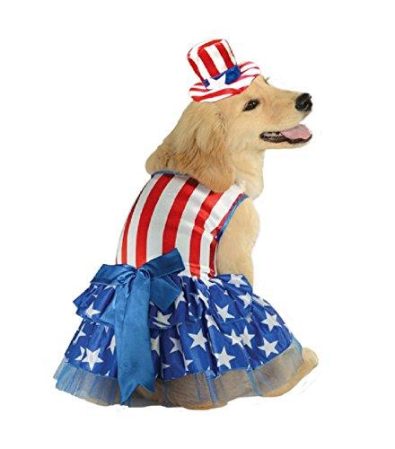 Mr. or Mrs. Uncle Sam