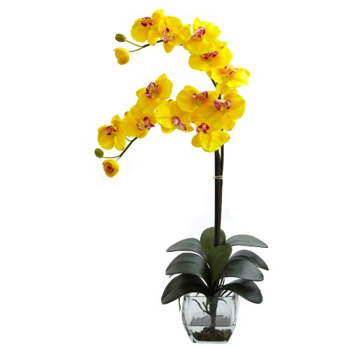 Nearly Natural 1323-YL Double Phalaenopsis Orchid with Vase Arrangement, Yellow ()