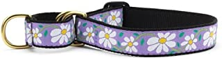 product image for Up Country Daisy Martingale Dog Collar - X-Large (15-25 Inches) - 1 in Width