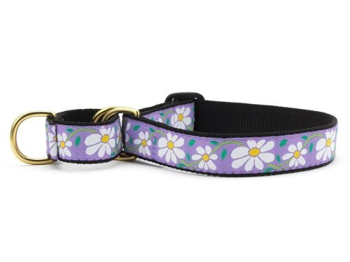 Up Country Daisy Martingale Dog Collar - X-Large (15-25 Inches) - 1 in Width
