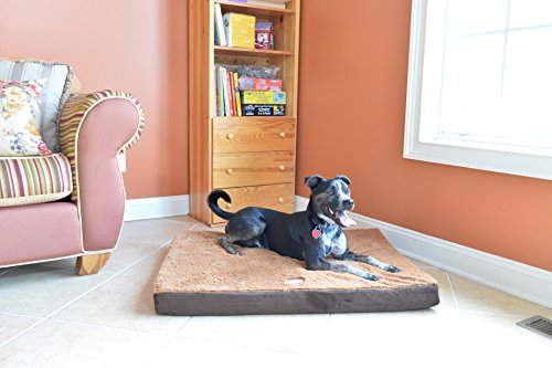 Armarkat Memory Foam Orthopedic Pet Bed Pad in Mocha and Brown, 24-Inch by 18-Inch by ()