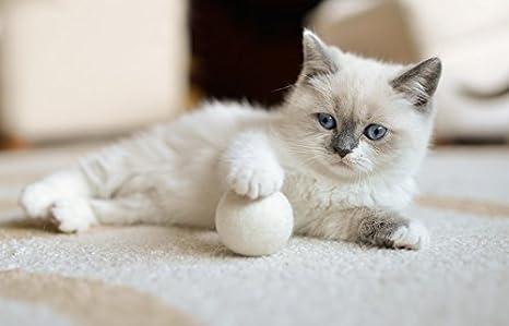 stylecats 3 gato Juguetes pelotas de fieltro, Fieltro pelotas para ...