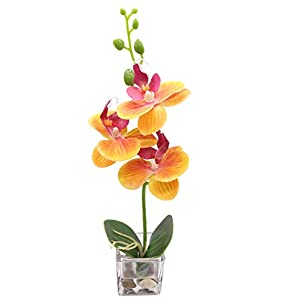 GXLMII Artificial Flowers Lifelike Real Touch Arrangement Phalaenopsis Bonsai Orchid Miniascape Home Decoration 107