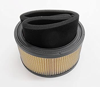 Replacement Kohler Air Filter 4508302. 45-083-02