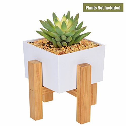 CUUCOR Mid Century Succulent Planter Stand with 3.1 Inch Mini White Planter Pot, Modern Indoor Plant Holder (Pack of 1 Square Planter Box and 1 Bamboo Stand) (Square Stand Planter)