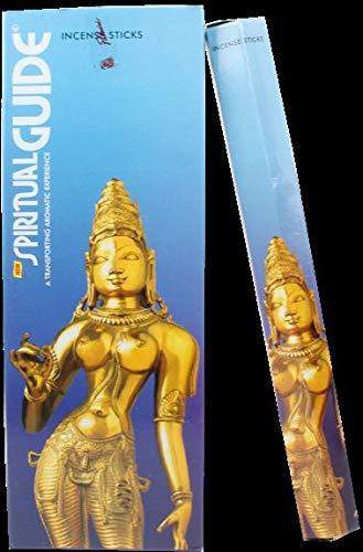 Encens spiritual guide - 20 grs - padmini - lot de 6 boites ...