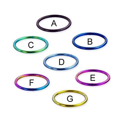 - MsPiercing Titanium Anodized Segment Ring, 16 Ga, Black - A