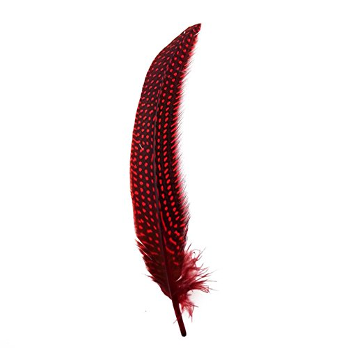 KOLIGHT Set of 50pcs Natural Dyed Pearl Pheasant Nest Feathers 6-8 inch DIY Decoration Clothing Accessories (Red)