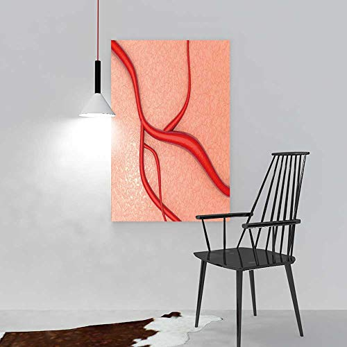 Wildcats Kentucky Tissue - aolankaili Modern Home Decor FramelessA Blood Vessel on Organic Tissue for The Kitchen, Dining Room, Living Room, bar and so on W12 x H18