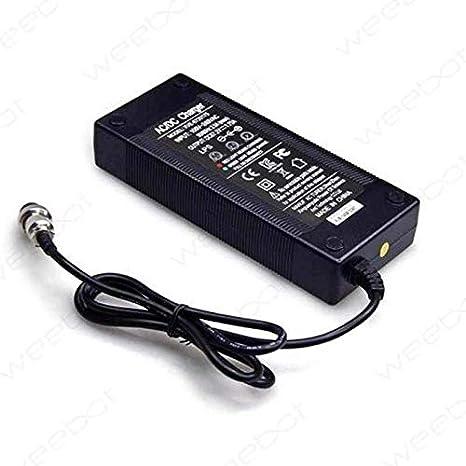 Weebot Cargador Speedway Mini 4 54,6 V batería 48 V: Amazon ...