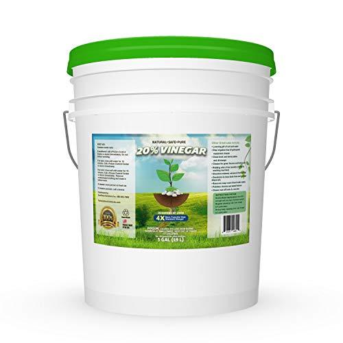 20% Vinegar | Industrial Strength Natural Vinegar | Multi Purpose - 5 Gallon Pail (What's The Best Weed Killer)