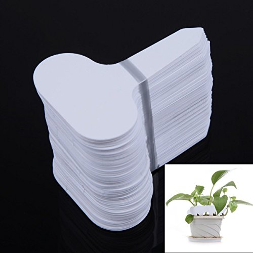 Tacoli Garden Labels Reusable- 100Pcs Plastic T-type Garden Tags Ornaments Plant Flower Label Nursery Thick Tag Markers For Plants Garden Decoration by Tacoli