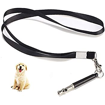 Amazon.com: ANSLYQA Dog Whistle Silent Dog Training