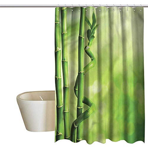 RenteriaDecor Shower Curtains Black and Silver Green,Bamboo Stems Nature Sunbeam,W108 x L72,Shower Curtain for clawfoot tub (Charcoal Tails Silver Bamboo)