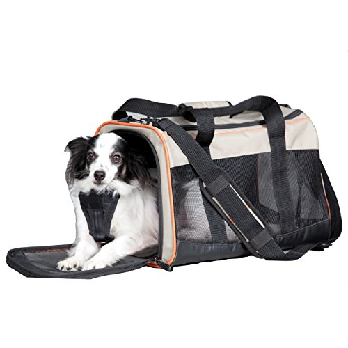 Kurgo Wander TM Pet Carrier